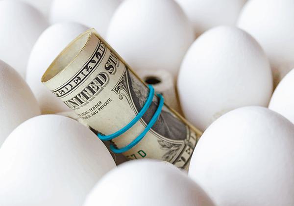 איך בוחרים קרנות פנסיה והשתלמות